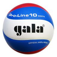 Volleybal Gala Pro-line 5171S10