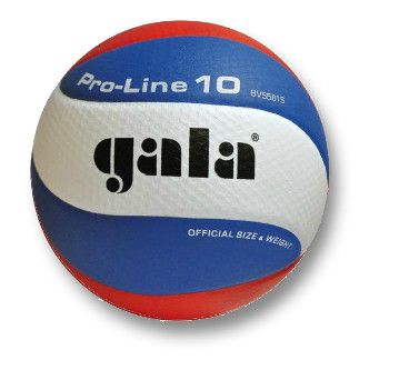 Volleybal Gala Pro-line 5581S10