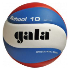 Volleybal Gala School 5711S10